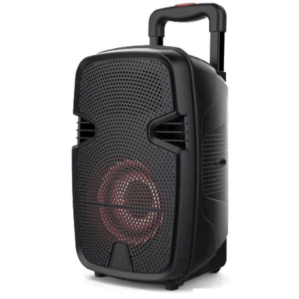 "Cassa acustica Amplificata Attiva portatile Ricaricabile trolley 8"" a Batteria Luce LED Bluetooth/SD/USB/Radio"